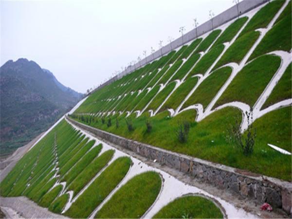 绿化护坡混凝土2